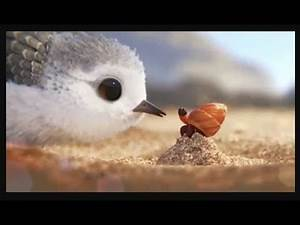 Piper Disney Pixar Oscar-Winning Short Movie || Animated - 2016 || Disney Pixar movie || Piper