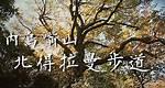 登山健行11👉北部北得拉曼步道神木群、內鳥嘴山山毛櫸季節限定,新竹旅遊景點推薦  Taiwan Hiking Trail