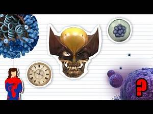Can WOLVERINE Ever Die? - Science Behind Superheroes