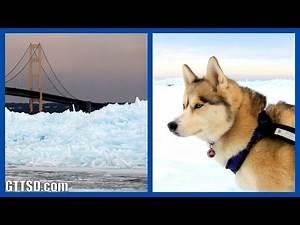 HUSKIES AND BLUE ICE | Mackinac Bridge Blue Glacial Ice