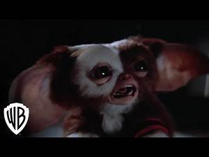 Gremlins 2: The New Batch | Gremlins Multiply | Warner Bros. Entertainment