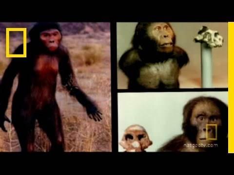 Bigfoot's Big Foot | National Geographic