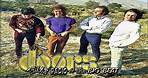 The Doors * Lyric Video Of The Wasp (Texas Radio And The Big Beat)
