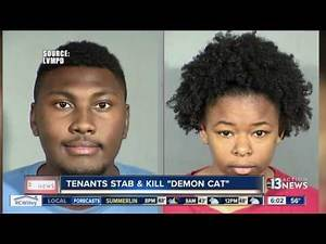 Las Vegas couple confesses to torturing, killing cat believed to be a demon