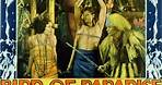 Bird of Paradise (1932) Full Movie