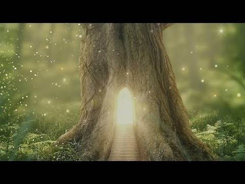 """Peaceful music, Relaxing music, Instrumental music """"Peaceful Forest"""" by Tim Janis"""