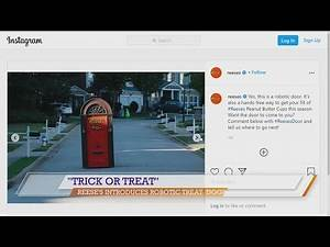 Good Day NWA: Trick or Treat at Reese's New Robotic Door