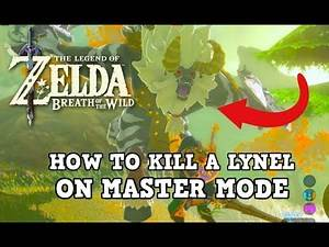 I Finally Defeated a Lynel in Master Mode in Breath of the Wild