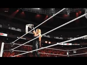 Hell In A Cell 2017: Natalya vs. Charlotte Flair. WWE SmackDown Women's Championship.