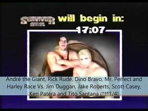 Survivor Series 1988 Review