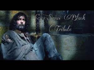 Harry Potter//Tribute to Sirius Black//Gary Oldman//Music by Among Us//Dear Hate