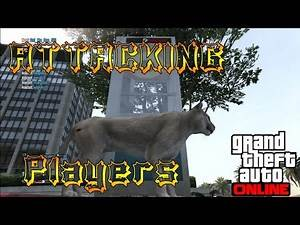 GTA 5 Attacking Players As A Mountain Lion