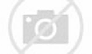 Monster Hunter Generations Ultimate: The Legend of Zelda trailer