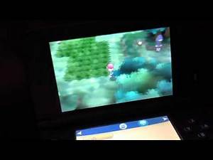 Pokemon x and y how to find 8 gym leader