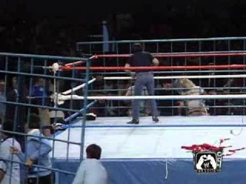 Wrestlemania 2 :Hulk hogan vs King kong bundy