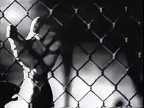 STONE COLD STEVE AUSTIN promo from survior series 1996