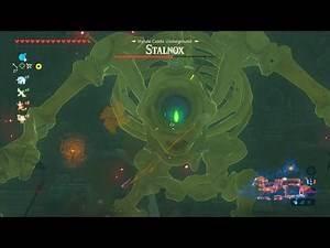 The Legend of Zelda: Breath of the Wild (Wii U) - 205 - Hyrule Castle (5/9 - Lockup)
