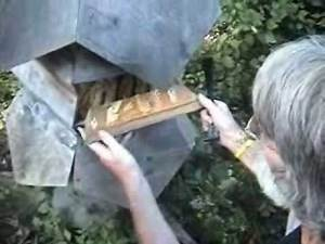 Ron Breland's New York Bee Sanctuary Part One of Three.wmv