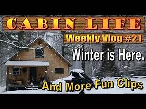 OFF GRID CABIN LIFE Winter Woods Lore & Mouse Bucket Madness