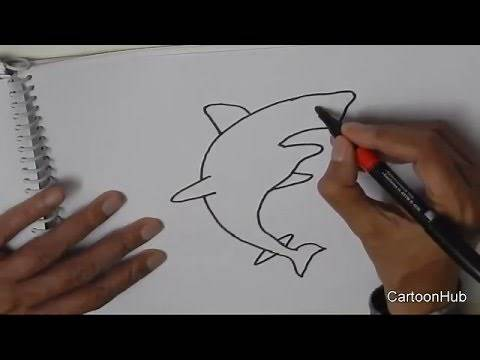 How to draw a Shark- in easy steps for beginners
