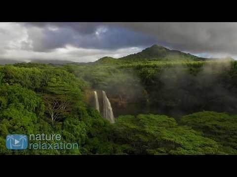 BEST OF 2018: 12 HOURS of Healing Music & Amazing 4K Nature Scenes by Nature Relaxation™