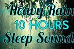 10 Hours Light Rain