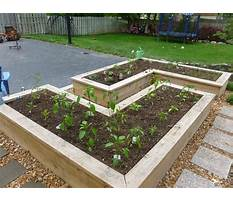Above ground garden boxes for vegetables Plan