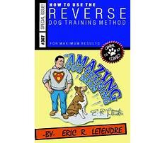 Amazing dog training.aspx Plan