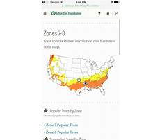 Arbor day craft projects for kids.aspx Plan