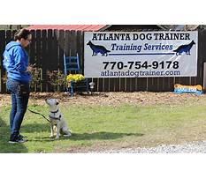 Atlanta dog training Plan