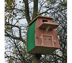 Barn owl house plans.aspx Plan