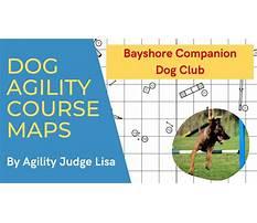 Bayshore companion dog training club Plan