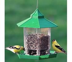 Best bird feeders for finches amazon Plan