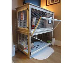 Best indoor cages for rabbits Plan