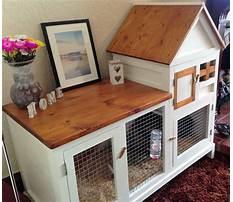 Best indoor rabbit hutch Plan