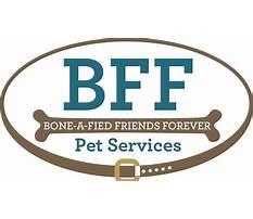 Bff dog training md.aspx Plan