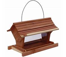 Bird feeders at lowes Plan