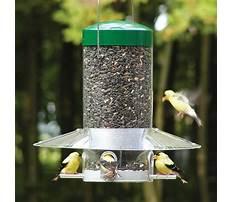 Bird feeders squirrel proof lowes Plan