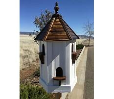 Bird house for sale Plan