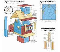 Build a birdhouse plans Plan