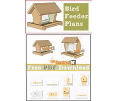Building simple bird feeders Plan
