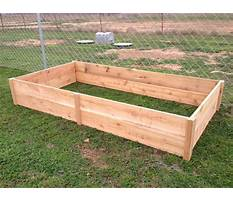 Cedar raised gardens Plan