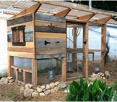 Cheap diy chicken coop plans free Plan