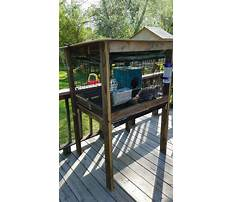 Cheap indoor rabbit hutch diy outdoor Plan
