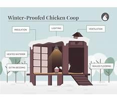 Chicken coop design cold winter Plan