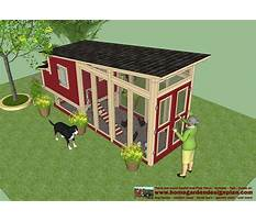 Chicken yard band Plan