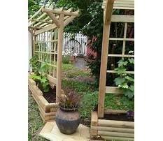 Creative grape arbors and trellises Plan