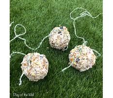 Diy bird feeders without peanut butter Plan
