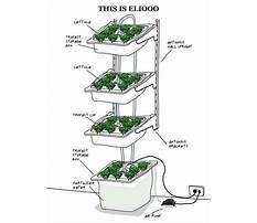Diy hydroponics system plans.aspx Plan