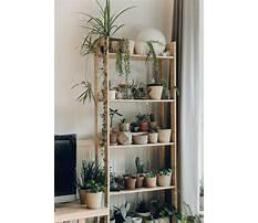 Diy plant shelf.aspx Plan